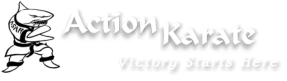 Action Karate - Chalfont